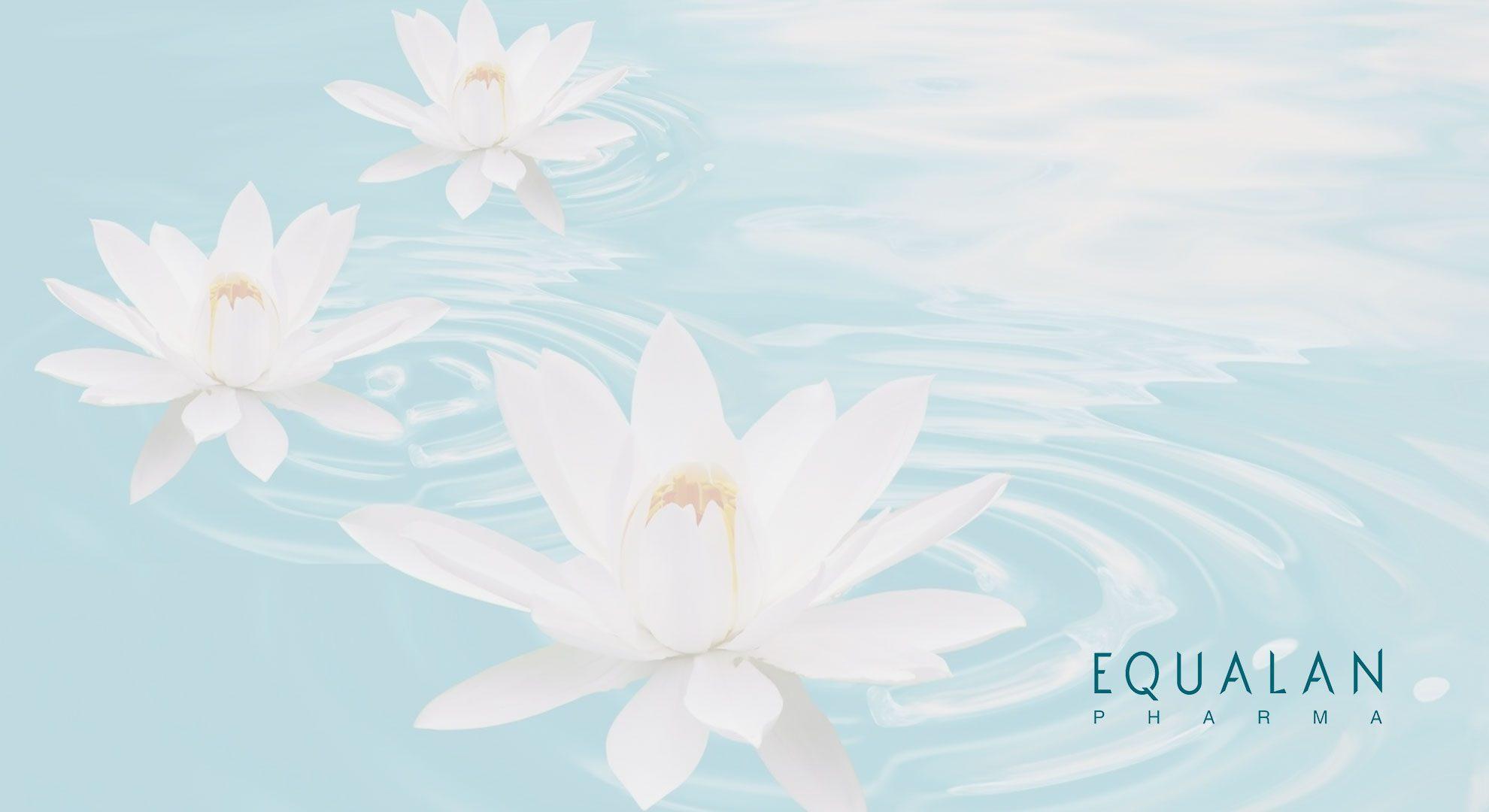EPE_wallpaper_waterlilies
